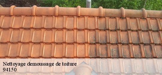Entreprise de nettoyage et démoussage de toiture à Rungis